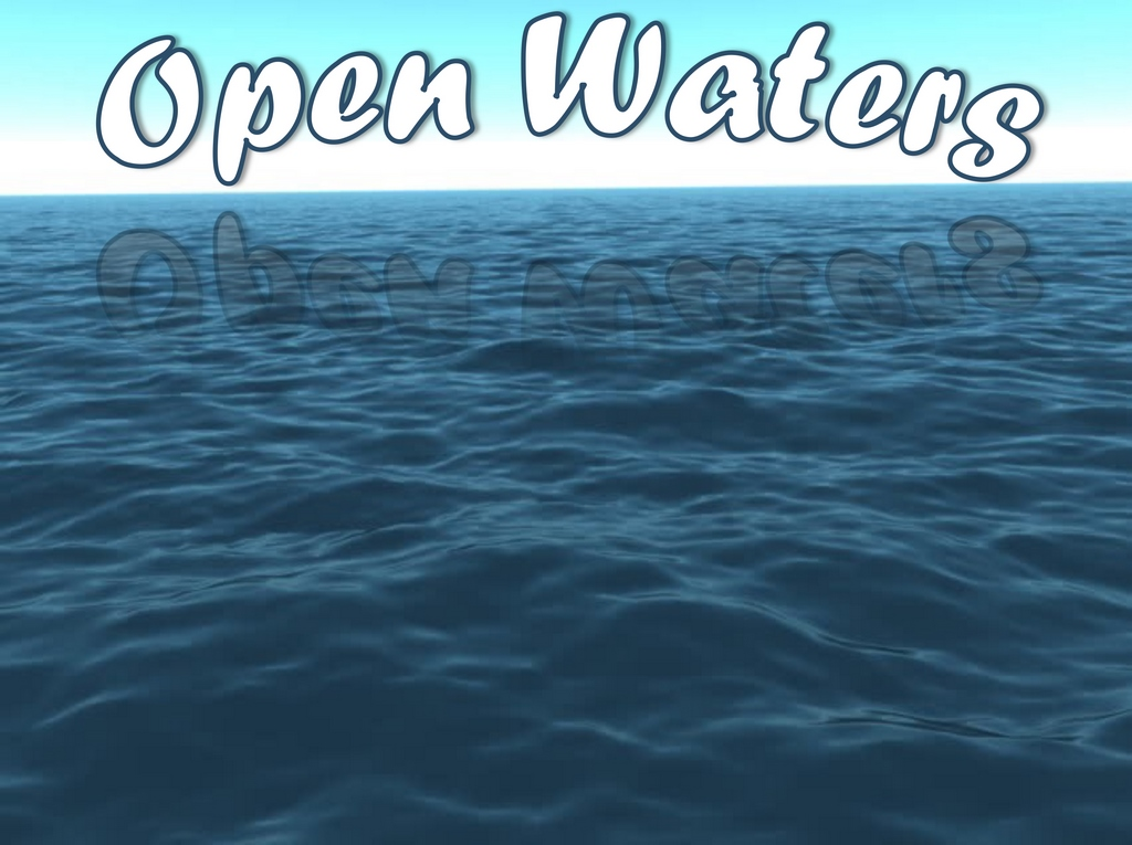 Welcome to WaterShapes' new monthly section, Open Waters, where we explore the variety and creativity of wide world of water with a rotating roster of blogs, travelogues and other discussions of all things aquatic.