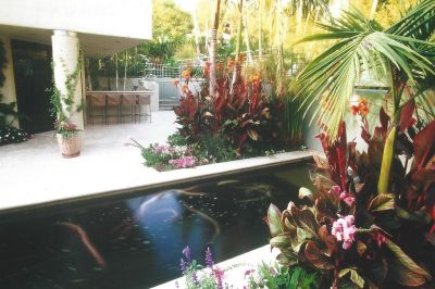 Lined with shimmering Travertine, the formal courtyard needed some softening.  What could be better, thought Colleen Holmes, than adding a sonorous waterfall along with a crisp, rectilinear pond -- and then livening it all up with the flashing colors of mood-altering fish?