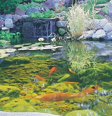 'When you install a pond, you install a lifestyle,' says Greg Wittstock, proclaiming the universal appeal of ponds, the variety of settings in which they can be placed and the huge range of aesthetic options available to consumers.  In this pictorial, he shares some of the many projects his company has completed, pointing out along the way the simple power found in these living watershapes.