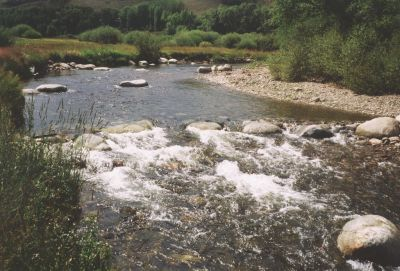 The tale of a river is often told by the life within it, observes Hal Hagen, the one-time owner and operator of a fish hatchery who has since become a specialist in restoring natural waterways.  Here, he explains his unique approach to a highly specialized form of watershaping – and discusses how understanding the way nature works in the wild can inform, enable and empower those seeking to replicate it in their man-made streams.