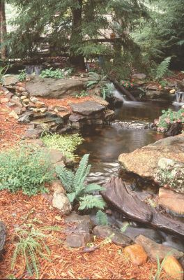 Creating natural-looking cascades and waterfalls requires the deft handling of a range of technical and aesthetic details – the chief of which, observes watershaper Bob Dews, is effective concealment of the water's source.  Here, this specialist in ultra-natural watershapes for residential and commercial clients discusses strategies he uses to hide the headwaters and conjure some distinctly 'natural' impressions.