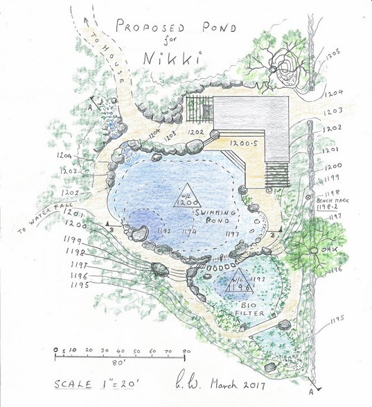 The size, shape and location of the pond is a response to the setting and sensitive to the different ways the client intended to enjoy the water and the beautiful surroundings.